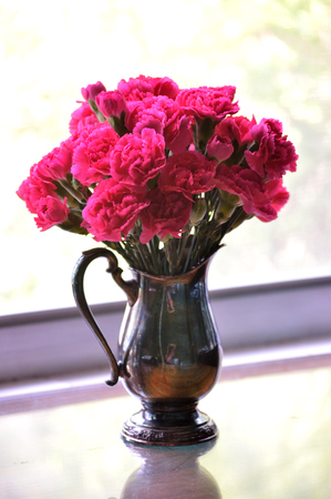 Bright pink carnations, cut flower arrangement, in heirloom silver vase. Stok Fotoğraf