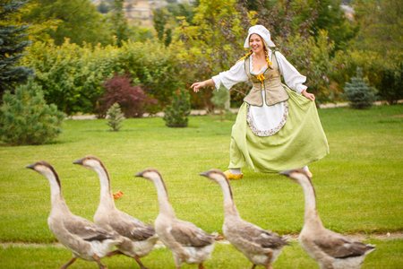 a cheerful peasant woman grazes geese on a meadow