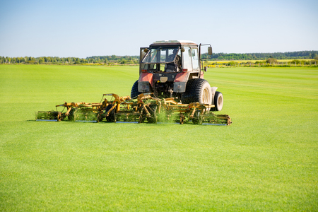 Tractor with a nozzle for care of a field lawn for a horse polo in work. The cut-off grass takes off from mechanical parts of a nozzle. Green flat field. Sky with beautiful clouds on background Stock Photo