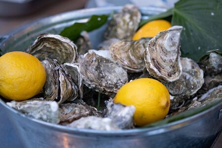Fresh oysters with lemons slices in ice. Restaurant delicacy. Saltwater oysters dish. Seafood Фото со стока