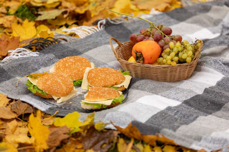 Autumn picnic in the forest or park, the blanket lies on yellow fallen leaves. Fruit in a basket and burgers
