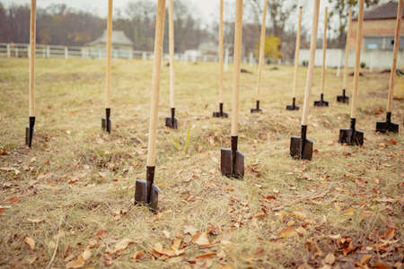 Work finished Group of shovels after planting young trees in countryside. many shovels stuck in the ground. eco tourism. greening the planet 版權商用圖片