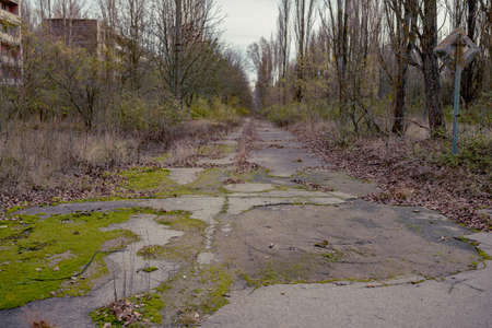 Abandoned ghost town Prypiat. Overgrown trees and collapsing buildings in Pripyat, Chornobyl exclusion zone. 版權商用圖片