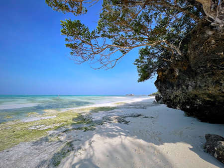Beach in Zanzibar, Tanzania. travel to an exotic country