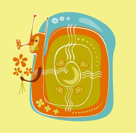 color snails  Illustration