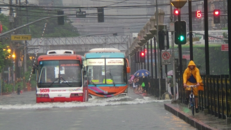 rains: Buses and cyclist passing through the flooded Espana Blvd  in Metro Manila  Flooding is brought by heavy rains created by Typhoon Trami and the seasonal monsoon rains