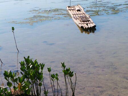 A bamboo raft
