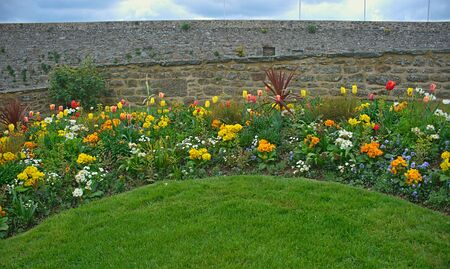 Various different blooming plants on lawn and stone wall behind