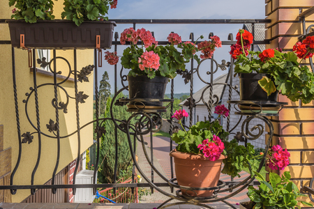 Flower pots with flowers hanging on the wrought iron grill of the terrace. The end of the summer . Podlasie, Poland.