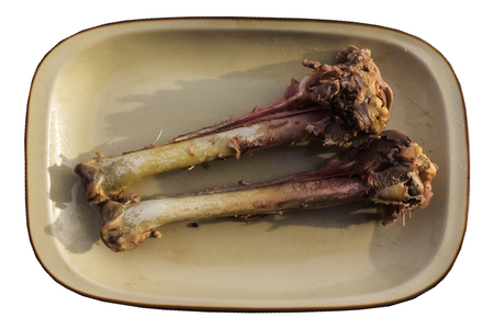 Two hip bones of  Turkey on large platter. The meat was used to prepare various food. Plate on white background .