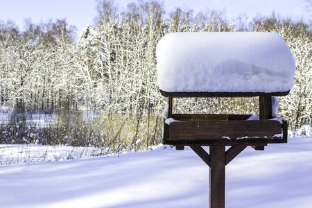 Snow cap on the bird feeder after a heavy snowfall. Interesting photo for the site about nature, parks and seasons. bird
