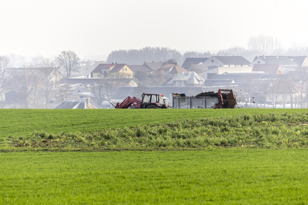 Late autumn. Tractor with trailer. Field fertilized with natural manure. Cow dung mixed with straw. Background - village house. Podlasie, Poland.