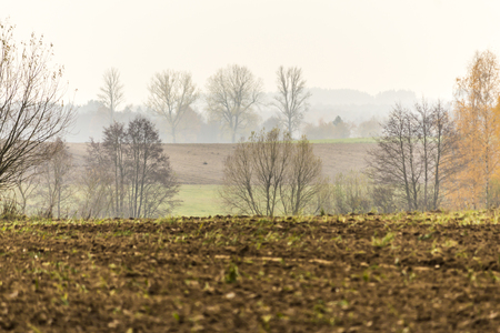 Late autumn. Sprawling field in the foreground. Trees and forest in the fog in the background. Site about agriculture. Podlaskie, Poland. Imagens