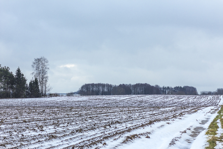 On the country road between arable land and meadow, there is some snow.Puddles on the road.Forest in the background.The beginning of winter in Europe.