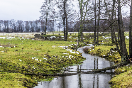 The stream flows between the trees and the green meadow. There is some snow in the fields. The beginning of winter in Europe.