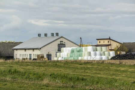 A good crop is stored near the barn. Cylindrical silo bales stacked in a pyramid. Industrial dairy farm. Podlasie, Poland.