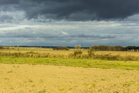 Late autumn. Green grass in the meadows and brown arable land. Dark sky in the background. Dairy farm. Podlasie, Poland.
