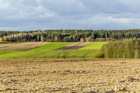 Late autumn. Brown arable land and fields separated by boundary furrows. Forest and trees in the background. Dairy farm. Podlasie, Poland.