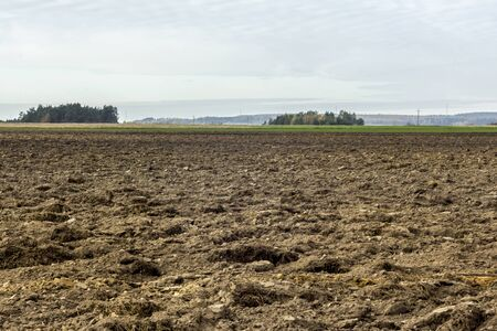 Late autumn. Large plowed field. Meadows and forest in the background. Dairy farm. Podlasie, Poland.