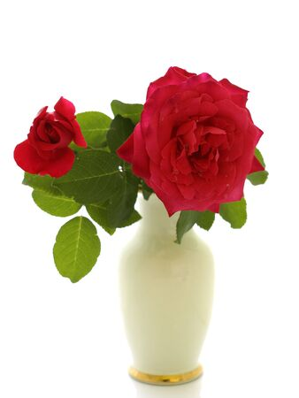 Two red roses in a vase isolated on a white background