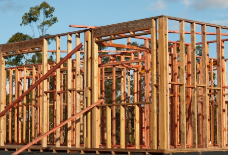 Pine Timber Wall Frames used for Kit DIY House Structure