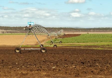 sugar land: Australian agriculture scene rural irrigation on sugar cane farm ploughed land