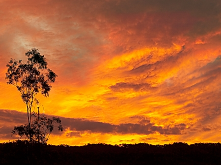 Fiery Australian sunset silhouette late evening background photo