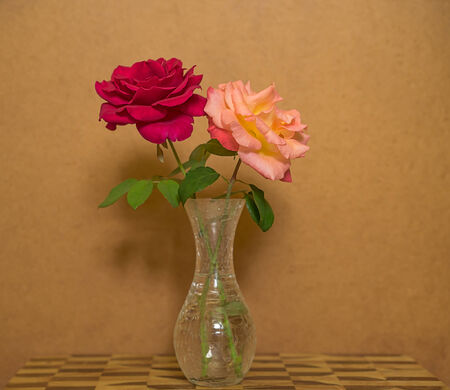 roses in vase with brown  grunge background photo