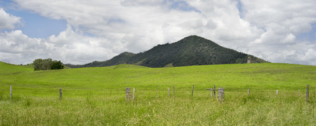 fenceline: Rural Australian panorama country scene with barb wire fenceline, rolling green hills, cloudy summer sky in Queensland