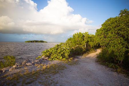 Looking at a tropical island across a gravel path through the mangroves in the Florida Keys