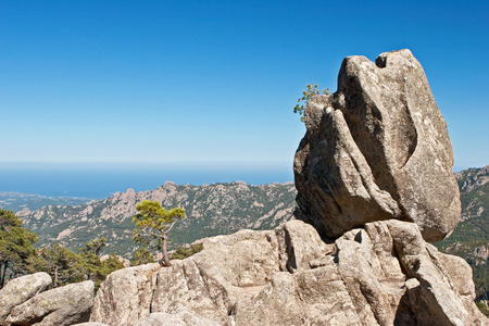 sentinel: The Sentinel rock of Corsica