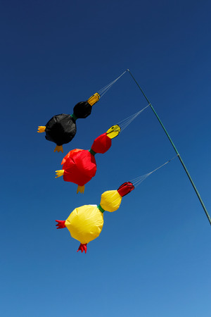 Wind kites with german national colours photo