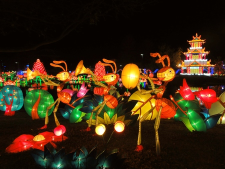 DALLAS, TEXAS, USA – DECEMBER 22: Lighted artwork exhibited during the Chinese Lantern Festival at Fair Park on December 22, 2012. Editorial