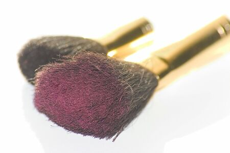 cosmetic brushes for applying blush