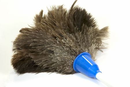 Household feather duster