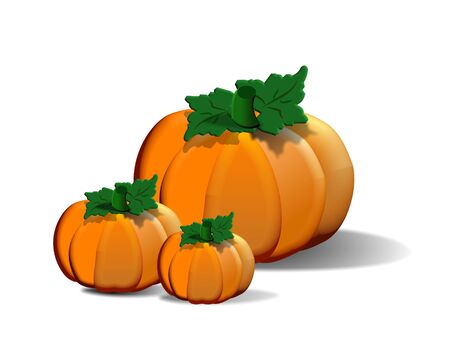 Three holiday pumpkins isolated on white.  Stock Photo