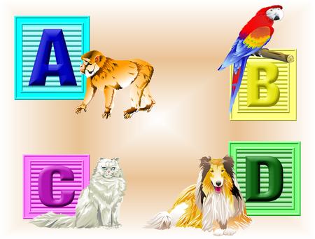 critter: Cuatro bloques de colores para ni�os a trav�s de un D con los que representan Critter