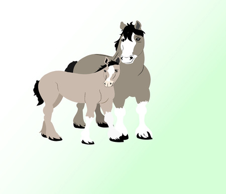 Draft mare and here foal isolated over slight gradient