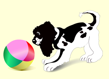Young mongrel puppy playing with a large beach ball