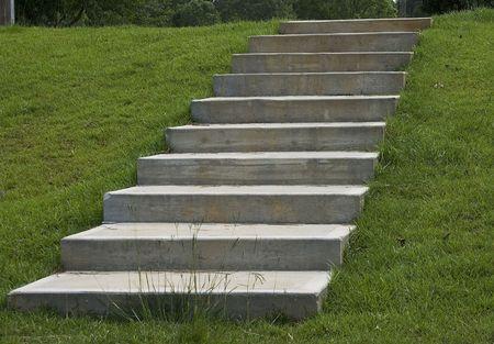 down the stairs: Pasos concretos que miran para arriba en hierba verde lush