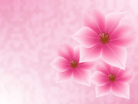 Three pink flowers on a pink background. Stock Photo - 2654315