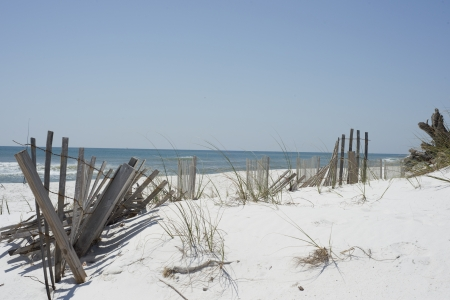 Beach fence and driftwood near Pensacola Beach, Florida. photo