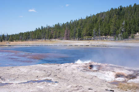 Steady Geyser in the Firehole basin of Yellowstone National Park. Stok Fotoğraf