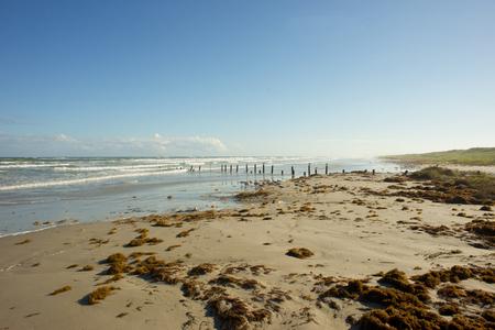 corpus: Texas Gulf coast beach near Corpus Christi after a storm. Stock Photo
