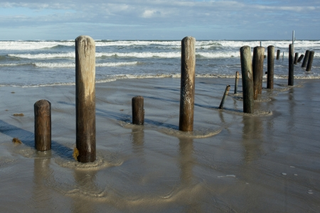 south padre: Old piling posts stand sentinel at a Mustang Island, Texas beach after a storm.
