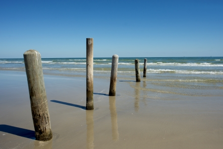 Old piling posts stand guard at a Padre Island beach