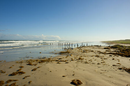 gulf: Texas gulf coast beach after a tropical storm