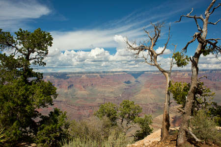 South rim view of the Grand Canyon. photo