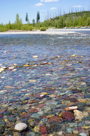 flathead: Flathead river in Glacier National Park in Montana.