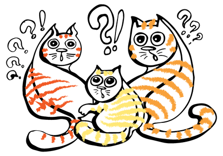 The group of fluffy red and orange striped cats is very surprised. The animals stare in amazement with bulging eyes, interrupting all their important affairs.